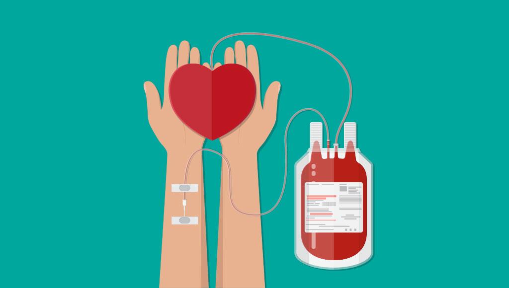 Día Nacional del Donante Voluntario de Sangre: ¿Por qué es importante donar? - Punto Convergente